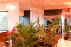 Cafe-area-3